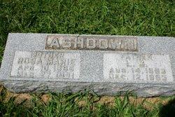 L G Ashdown