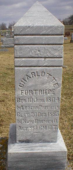 Wilhelmina Louisa <i>Fortriede</i> Weseli
