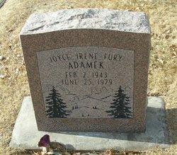 Joyce Irene Adamek