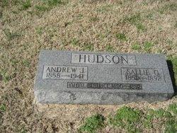 Andrew J Hudson