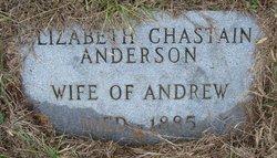Elizabeth <i>Chastain</i> Anderson