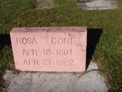 Rosa Cone