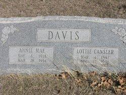 Annie Mae Davis