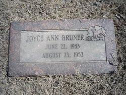 Joyce Ann Bruner