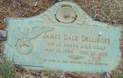 James Dale Dellinger