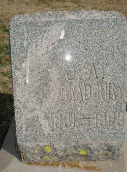 J. A. Bradbury