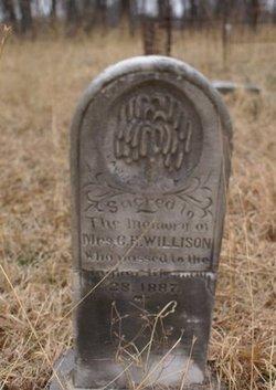 Mrs C E Willison