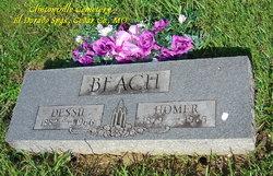 Homer Henry Beach