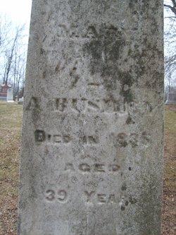 Mary A. Bushey
