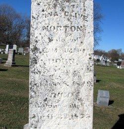 Mina Olive <i>Morton</i> Galloway