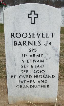 Sgt Roosevelt Barnes, Jr