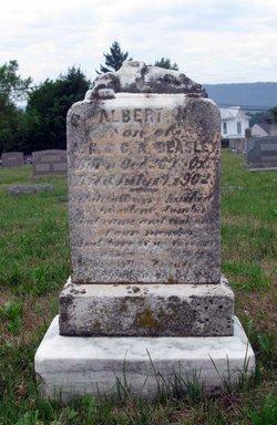 Albert N. Beasley