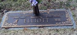 Clara Lee Shorty <i>Waldrep</i> Elliott