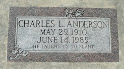 Charles Laverne Anderson