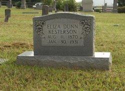 Eliza Jane <i>Dunn</i> Kesterson