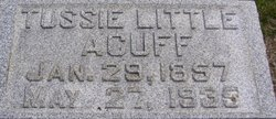 Tennessee Tussie <i>Little</i> Acuff