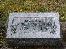 Bridget Ann <i>Sullivan</i> Barber