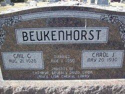 Carol J. Beukenhorst