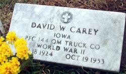 David W Carey