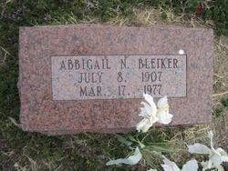 Abbigail N. Bleiker