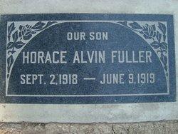 Horace Alvin Fuller