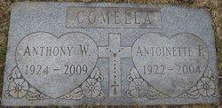Antoinette F. <i>Alberti</i> Comella