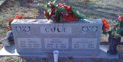 Hettie Cole