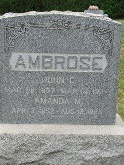 Amanda M Ambrose