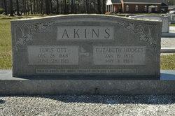 Lewis Ott Akins