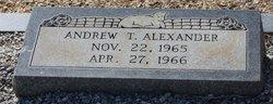 Andrew T Alexander