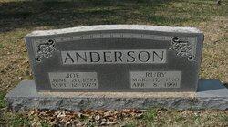 Joe Anderson