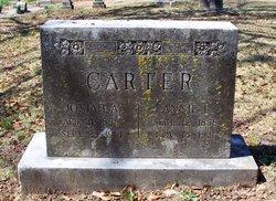 Annie Logan <i>Anderson</i> Carter