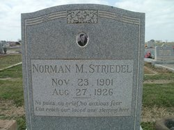 Norman M. Striedel