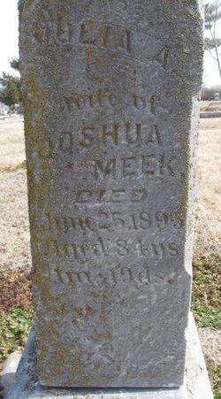 Julia Ann <i>Russell</i> Meek