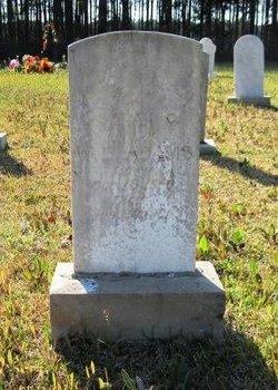 Sarah Ellen <i>Graves</i> Adams