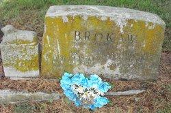 Sarah Elizabeth Sadie <i>Chinn</i> Brokaw