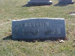 Joseph Henry Smelik