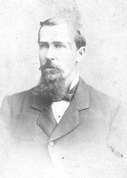 Albert Drayton Andrews