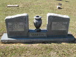 Agnes <i>Price</i> Martin