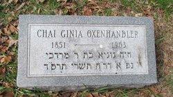 Chai Ginia Oxenhandler