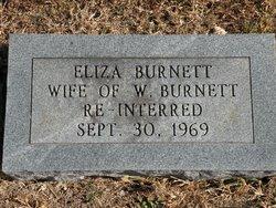 Eliza Burnett
