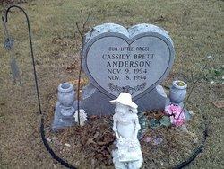 Cassidy Brett Anderson