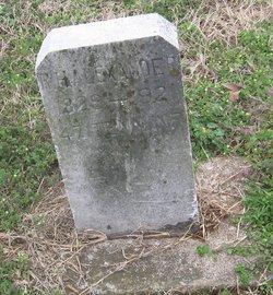 Robert Hartwell Alexander