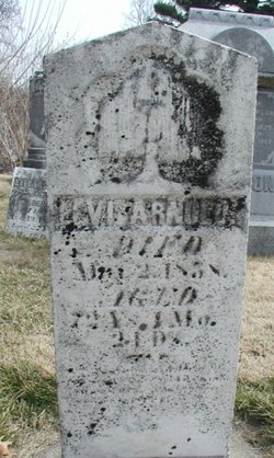 Levi Arnold