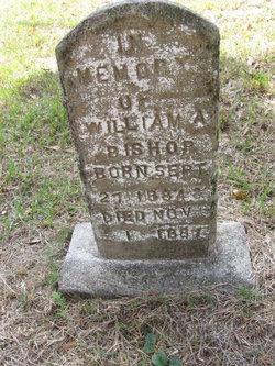 William A. Bishop