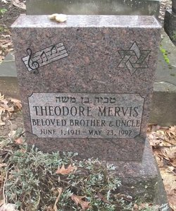 Theodore Ted Mervis