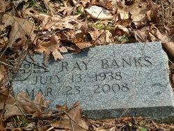 Abby Ray Banks