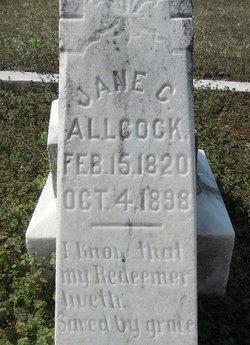 Jane C Allcock