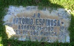 Antonia J.R Espinosa