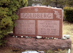 Sophie <i>Green</i> Goldberg